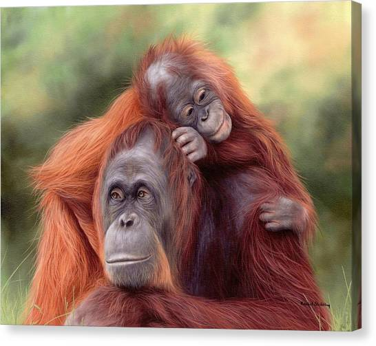 Orangutans Painting Canvas Print