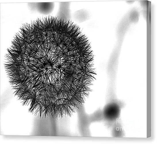 Orb Canvas Print by A K Dayton