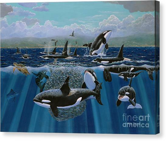 Orcas Canvas Print - Orca Play Re009 by Carey Chen