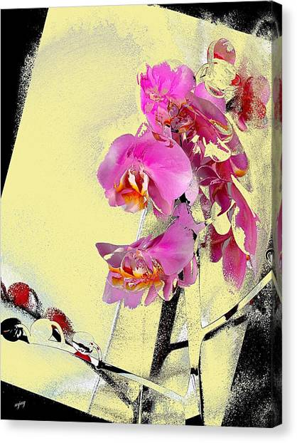 Orchid And Cream Canvas Print by Martin Jay
