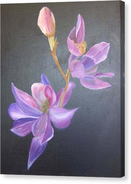 Orchid Canvas Print by Catherine Swerediuk