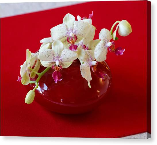 Canvas Print featuring the photograph Orchid Center Piece by Paul Indigo