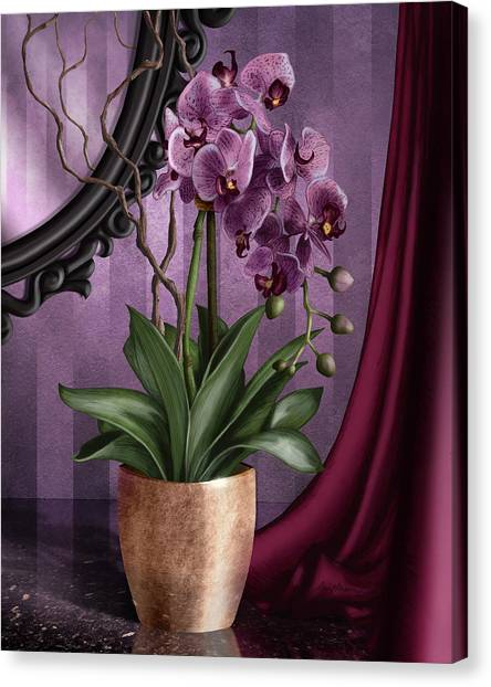 Orchid I Canvas Print