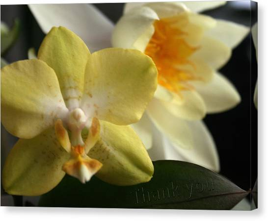Orchids Canvas Print - Orchid Lily  And A Reminder To Utter The Words Thank You.  by Raenell Ochampaugh