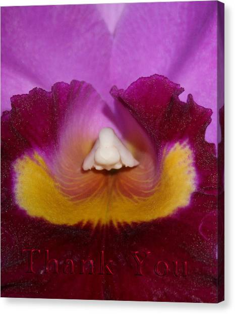 Orchids Canvas Print - Orchid Nose And A Reminder To Utter The Words Thank You. by Raenell Ochampaugh
