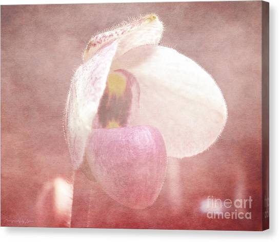 Orchid Softly Canvas Print