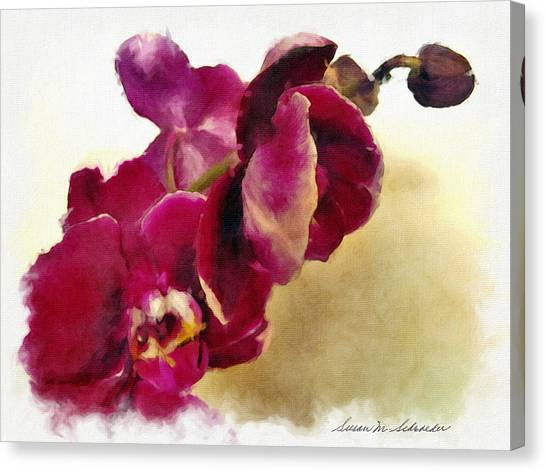 Orchids No. 5 Canvas Print