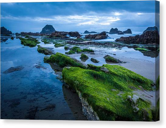 Oregon Blues Canvas Print
