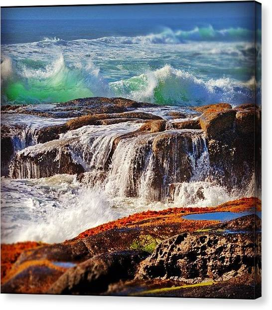 Wet Canvas Print - Oregon Coast by Jill Battaglia