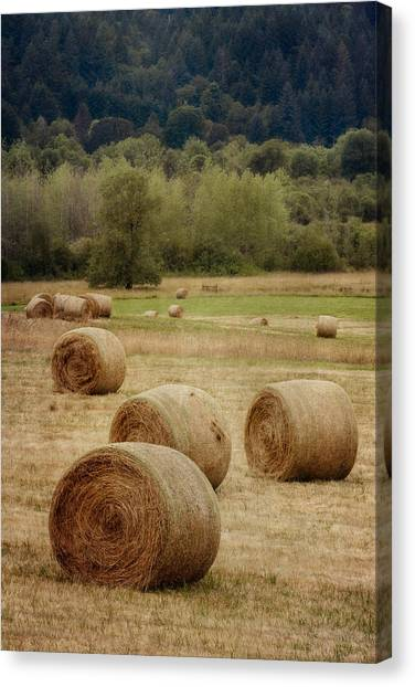 Hay Bales Canvas Print - Oregon Hay Bales by Carol Leigh