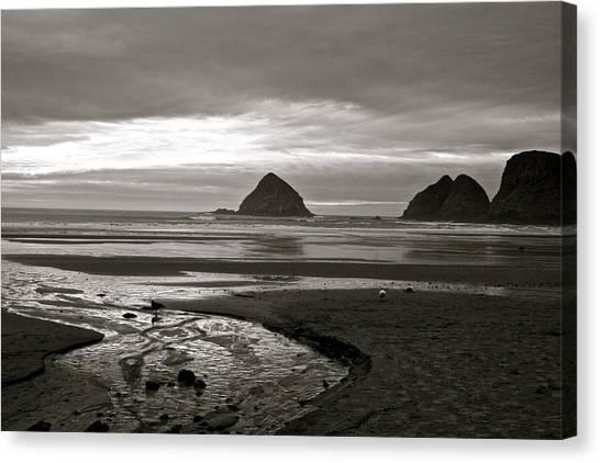 Oregon Seashore Canvas Print