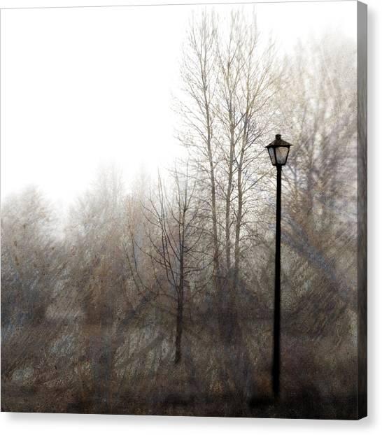 Post Falls Canvas Print - Oregon Winter by Carol Leigh