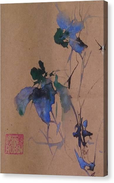 Oriental Blue Louisiana Iris Flower Study  Canvas Print