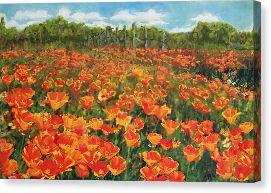 Canvas Print featuring the painting Original Fine Art Painting Orange Popies North Carolina by G Linsenmayer
