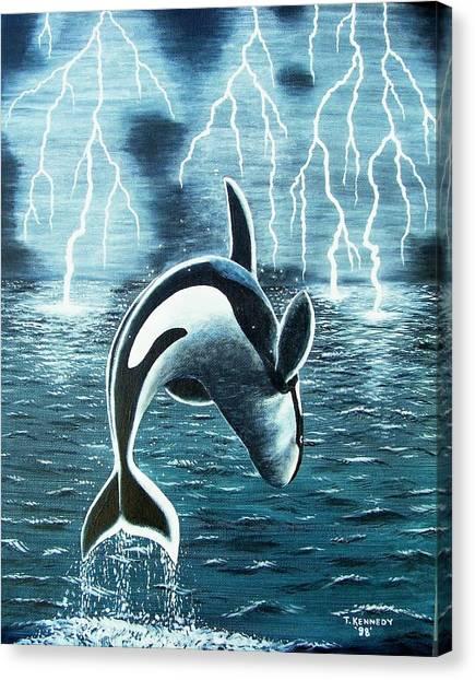 Orka     Killer Whale Canvas Print