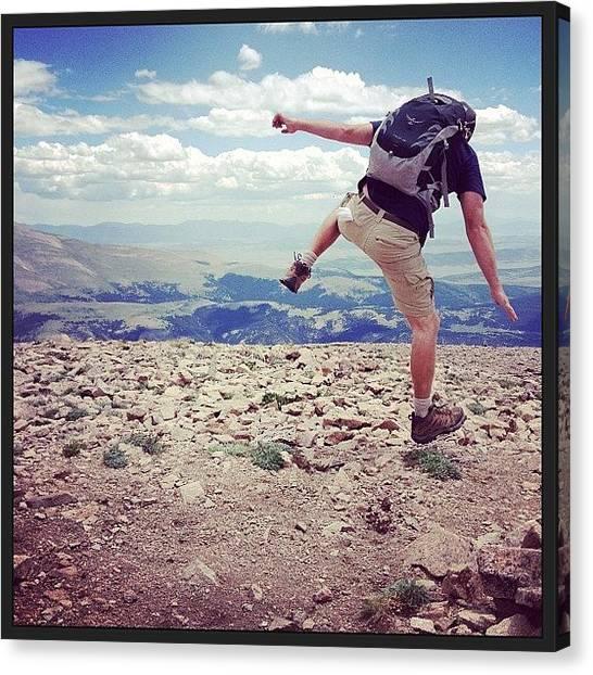Osprey Canvas Print - #osprey #bpmag #14000feet by Andy Zwick