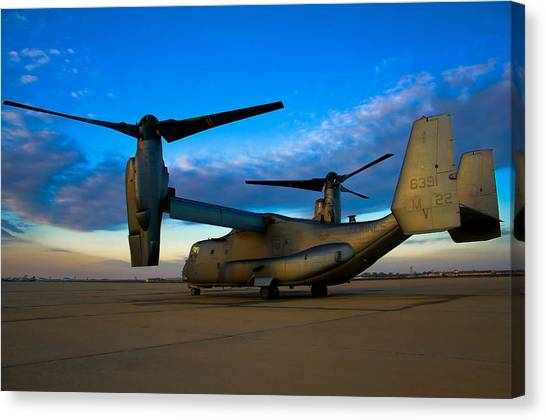 Osprey Canvas Print - Osprey Sunrise Series 1 Of 4 by Ricky Barnard