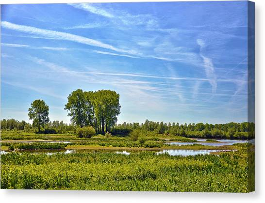 Ossenwaard Near Deventer Canvas Print