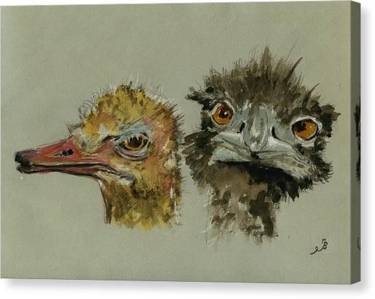 Ostriches Canvas Print - Ostrichs Head Study by Juan  Bosco