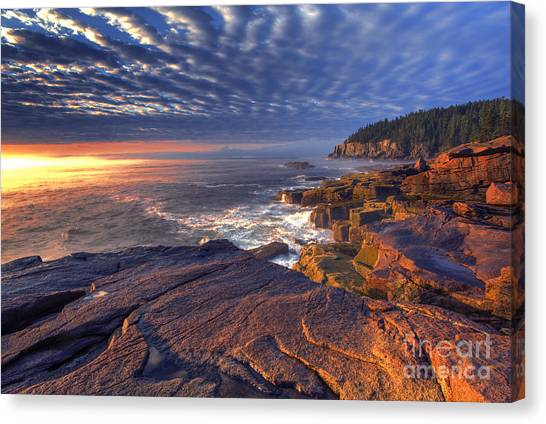 Otters Canvas Print - Otter Cove Sunrise by Marco Crupi