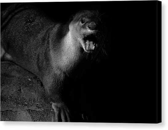 Otters Canvas Print - Otter Wars by Martin Newman