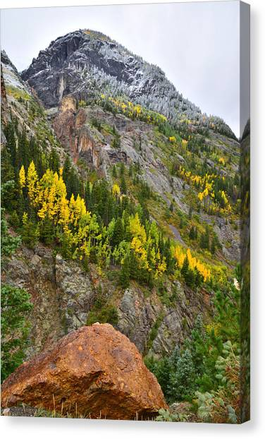 Ouray Canyon Fall Color Canvas Print