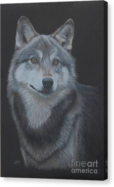 Canvas Print - Out Of The Darkness by Jill Parry