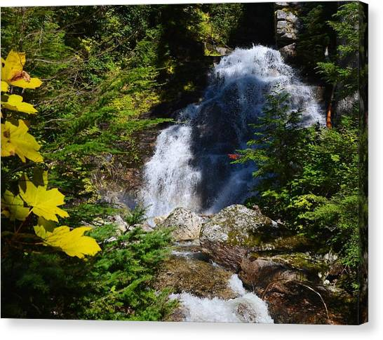 Randy Moss Canvas Print - Out Of The Mt Waterfall  by Randy Giesbrecht