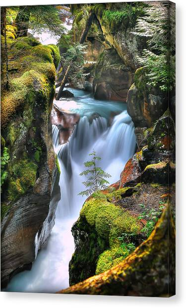 Glacier National Park Canvas Print - Out On A Ledge by Ryan Smith