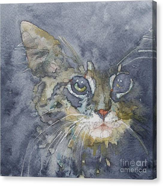 Kittens Canvas Print - Out The Blue You Came To Me by Paul Lovering