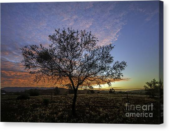 Canvas Print featuring the photograph Outback Sunset  by Ray Warren