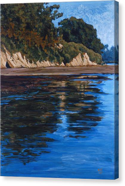 Outflow-goleta Slough Canvas Print