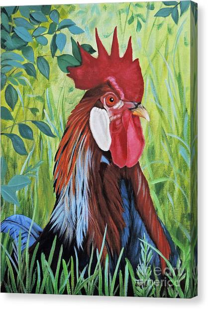 Outlaw Rooster Canvas Print