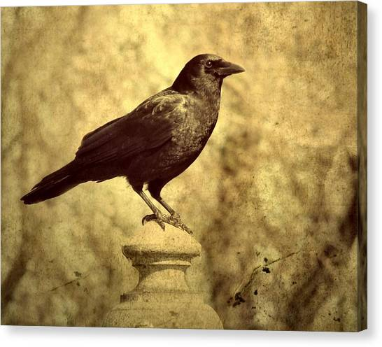 Ravens In Graveyard Canvas Print - The Raven's Outlook by Gothicrow Images