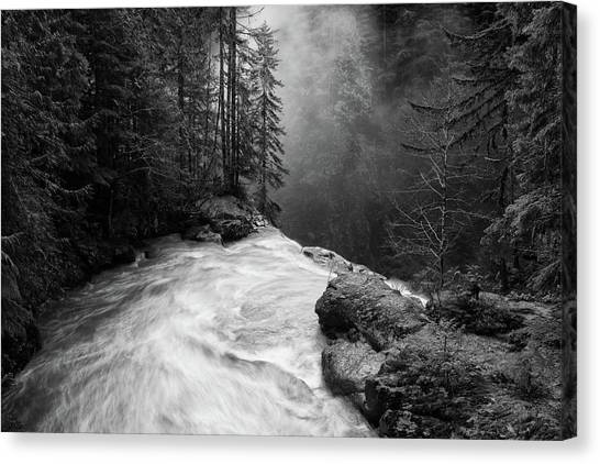 Pine Trees Canvas Print - Over The Falls by James K. Papp