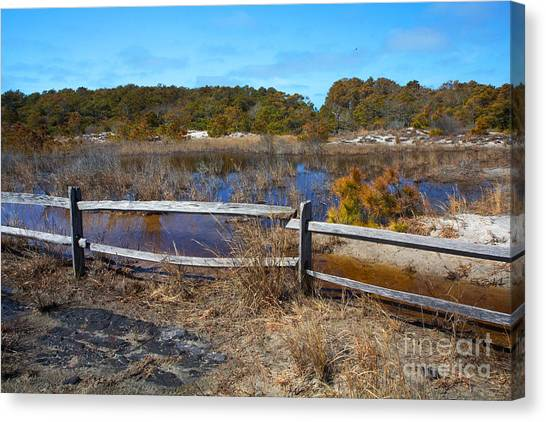 Over The Fence Canvas Print by Robert Pilkington