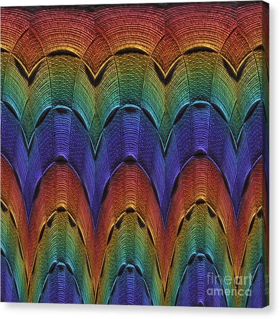 Over The Rainbow Multi Canvas Print