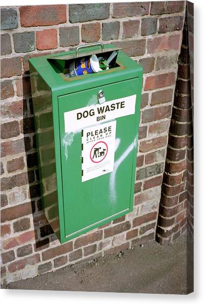 Rubbish Bin Canvas Print - Overflowing Dog Waste Bin by Robert Brook/science Photo Library
