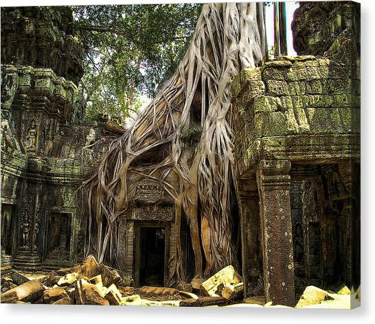Overgrown Jungle Temple Tree  Canvas Print