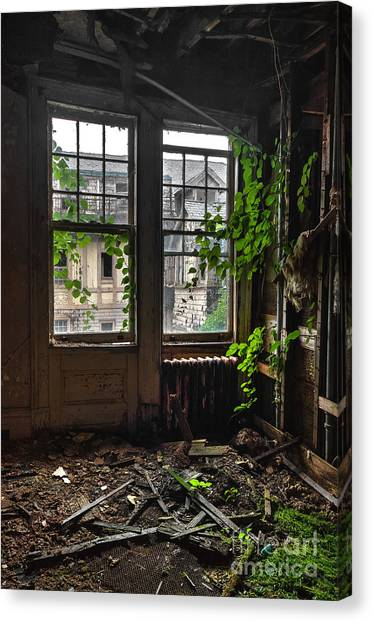 Junior College Canvas Print - Overgrowth by Rick Kuperberg Sr