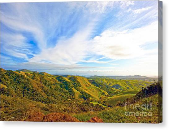 Overlooking Morro Bay Ca Canvas Print by Artist and Photographer Laura Wrede