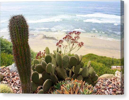 Canvas Print - Overlooking San Elijo Beach by Ann Patterson