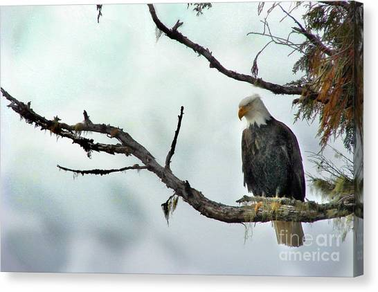 Overseeing Dinner Canvas Print