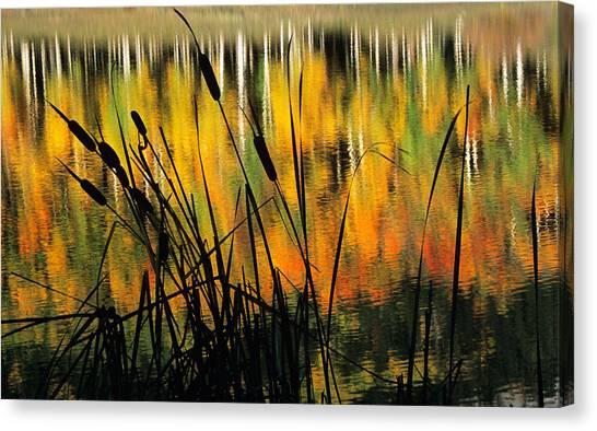 Owl Creek Pass Fall 3 Canvas Print