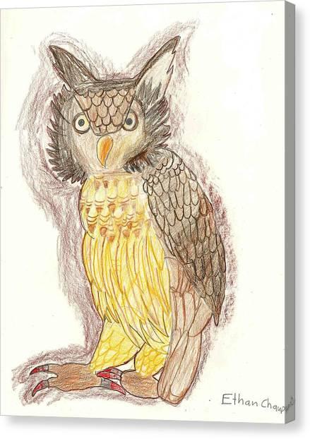 Wise Owl Canvas Print by Ethan Chaupiz