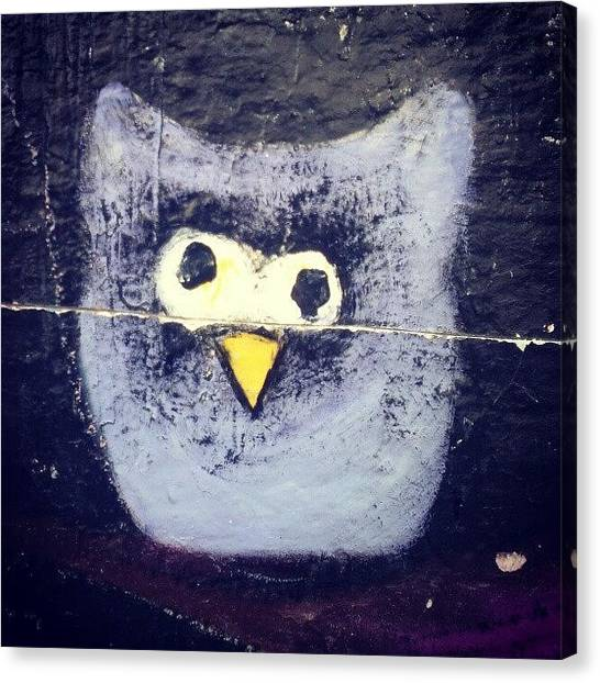Owls Canvas Print - Owl On The Wallbuho En Una Pared by Juan Parafiniuk