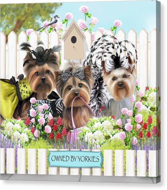 Owned By Yorkies II Canvas Print