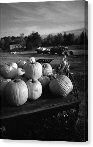 Oxford Pumpkins Bw Canvas Print