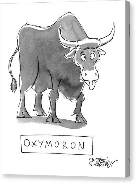 'oxymoron' Canvas Print
