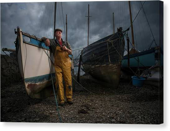 Oyster Catcher Canvas Print by Mk.